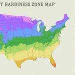 Understanding Garden Zones (Infographic)