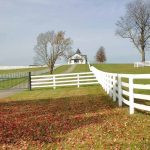 Things to Consider When Choosing Your Homesteading Property
