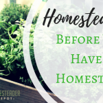 Homesteading Before Having a Homestead