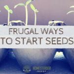 Frugal Ways to Start Seeds