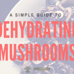 A Simple Guide to Dehydrating Mushrooms