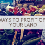 Ways to Profit Off Your Land