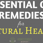Essential Oils for Natural Health (Infographic)