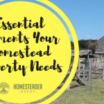 Essential Elements Your Homestead Property Needs