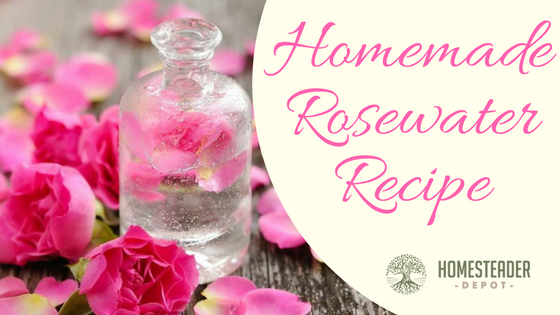Homemade Rosewater Recipe