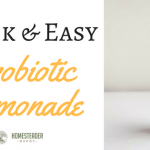 Quick and Easy Probiotic Lemonade