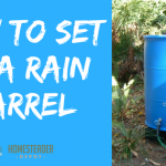 How to Set Up A Rain Barrel (Infographic)
