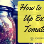 How to Use Up Extra Tomatoes