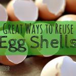 13 Useful Ways to Reuse Eggshells