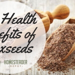 The Health Benefits of Flaxseeds
