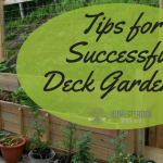 6 Tips for Successful Deck Gardening