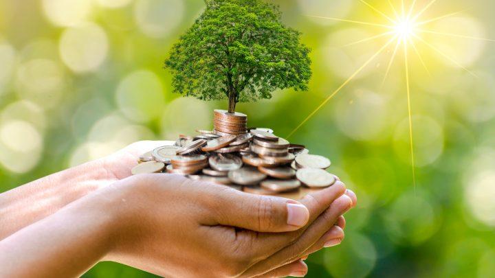 10 Simple Money Saving Tips Everyone Should Follow