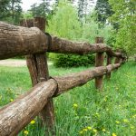 7 Great Fence Alternatives for Your Yard