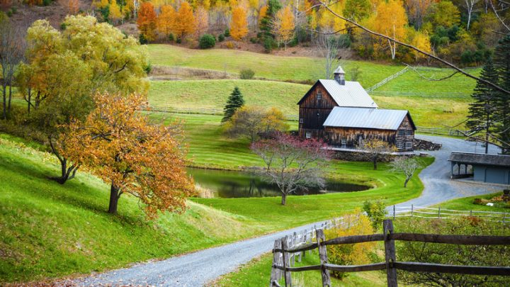 7 High Tech Tools and Tricks for Modern Homesteading