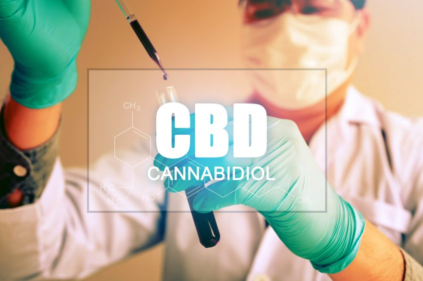 How Can CBD Help You and Should it be Legal?