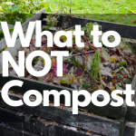 8 Items to NOT Include in Your Compost